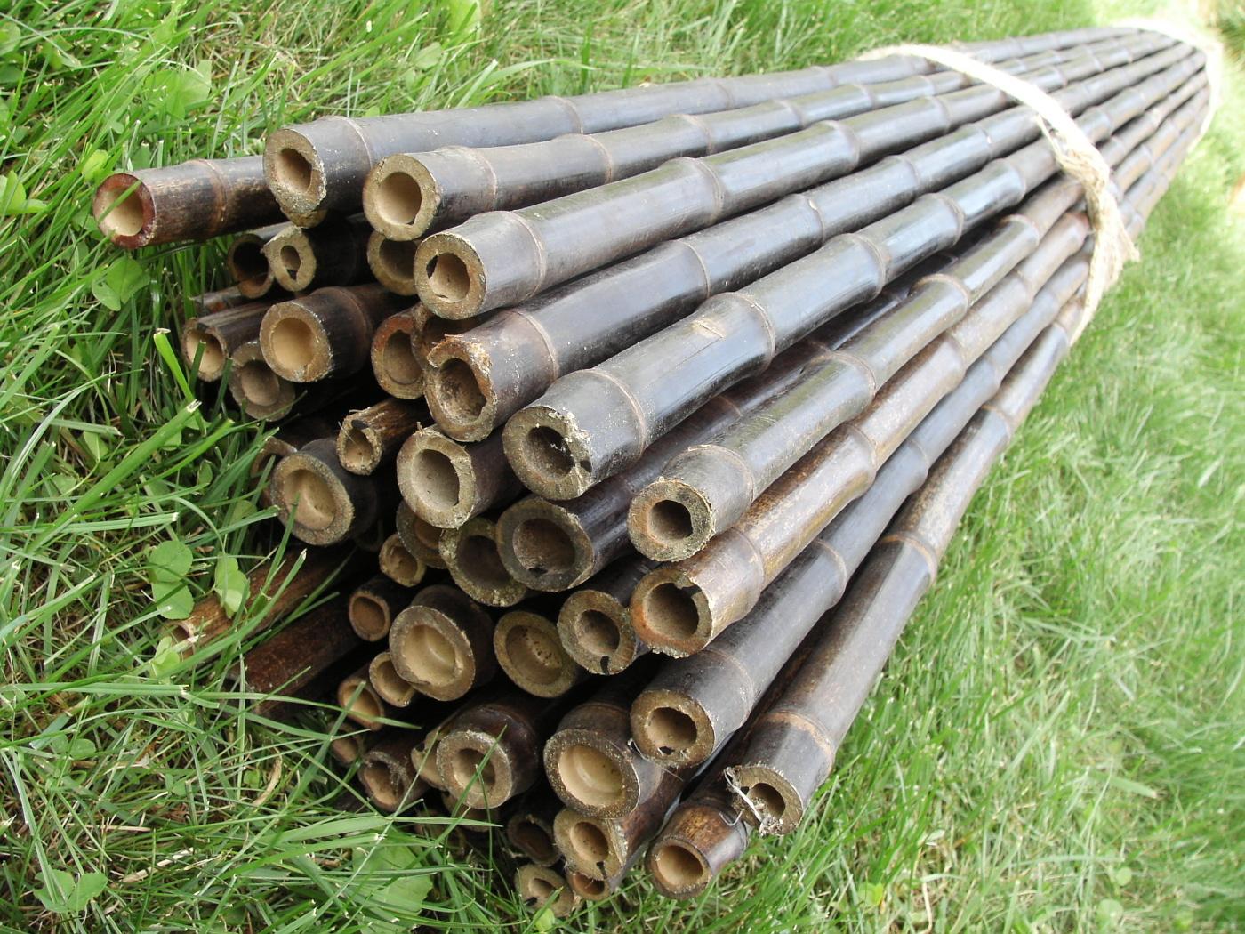Kokos oferta bambuspf hle und andere artikel - Bambusrohre deko ...